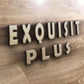 Exquisit plus
